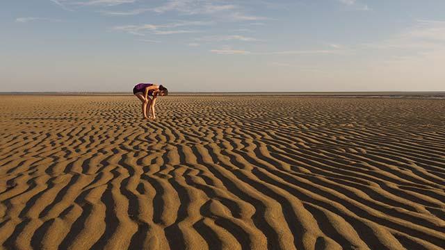 Brewster Mudflats Cape Cod
